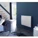 Oniris atlantic radiateur horizontal ambiance
