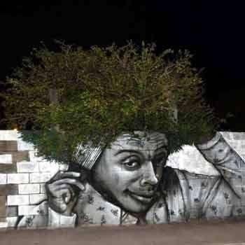 Le Street Art se met au vert !